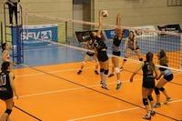 volleyball-1375499_1920.jpeg